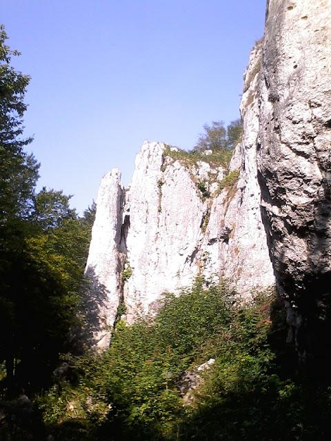 Jaskinia Wierzchowska na Wyżynie Krakowsko-Częstochowskiej
