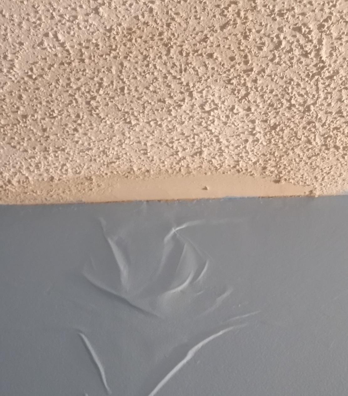 Neko Random: Photos: Ceiling Leak In Bathroom