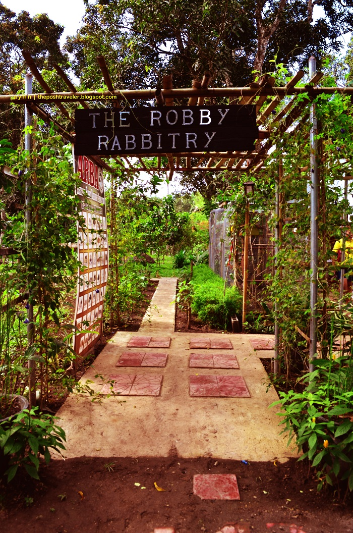 The Robby Rabbitry Farm Part 1