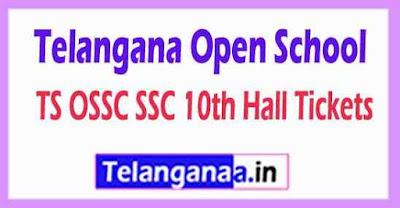 Telangana Open School SSC 10th Hall Tickets