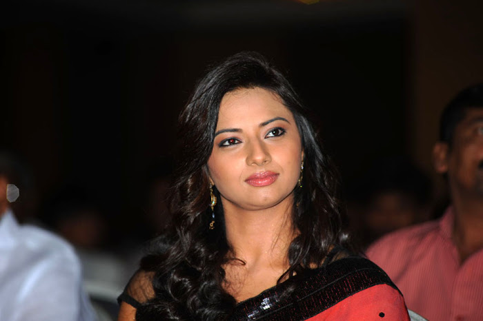 isha chawla at poola rangadu audio launch, isha chawla saree