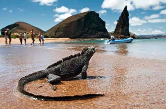 41 Lugares Turísticos de Galápagos