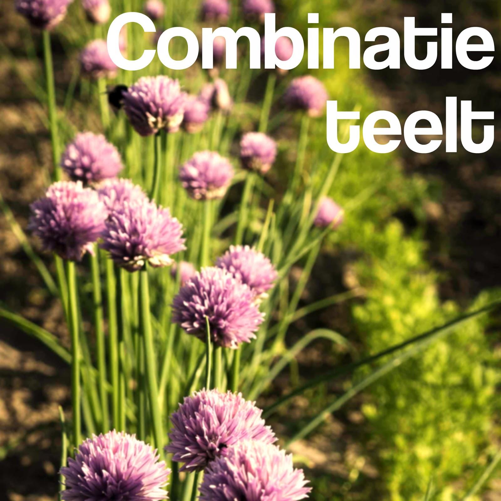combinatieteelt companion planting
