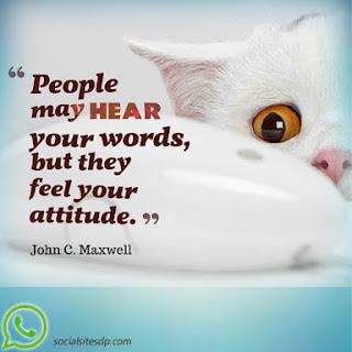 Whatsapp Attitude profile pic