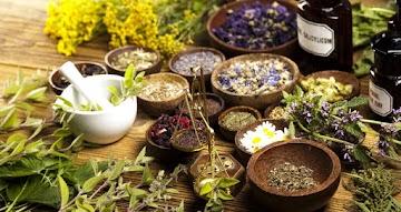 Ervas medicinais milenar: abraçando a medicina da natureza