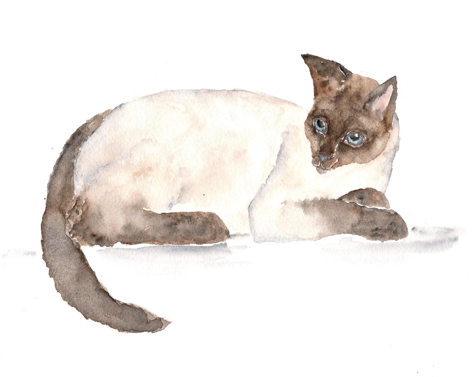 Thimble Sparrow: Watercolor cat prints and original ...