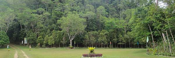Famous Tree planting,picnic, trekking and mountain biking sikatuna tree park at bohol philippines 2018
