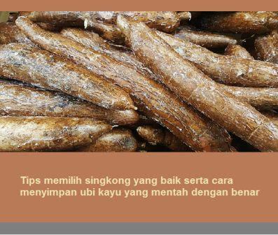 Tips memilih singkong yang baik serta cara menyimpan ubi kayu yang mentah dengan benar
