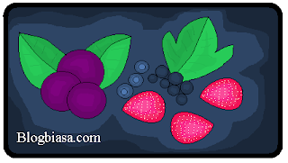 Daftar list nama macam jenis tanaman buah berry di dunia beserta gambar foto dan keteranganya