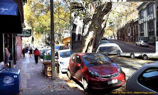Rua do Bairro Cordon | Montevidéu
