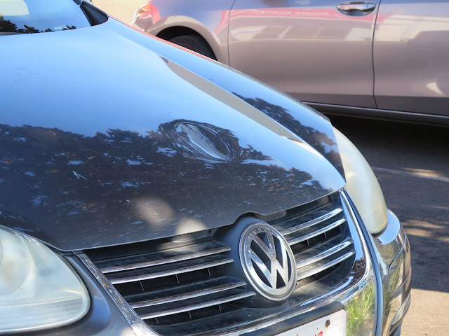 Freeway missile (who knows what) hit the hood of this Volkswagen and caused a huge dent