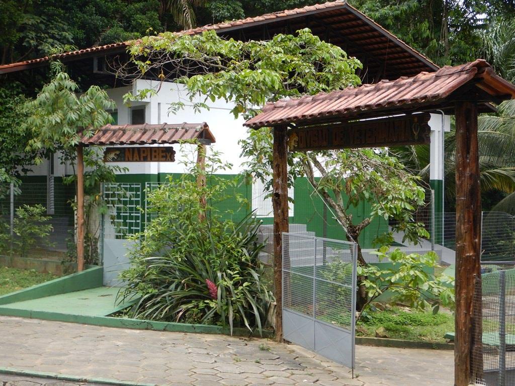 CIGS - Centro de Instrução de Guerra na Selva