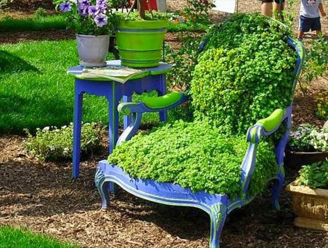 ปลูกต้นไม้บนเก้าอี้ซะเลย