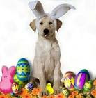 ¡¡¡¡FELICES PASCUAS!!!!