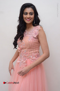 Actress Neha Hinge Stills in Pink Long Dress at Srivalli Teaser Launch  0035.JPG