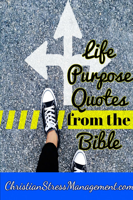 Life Purpose Quotes From The Bible