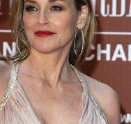 aca089093e5a Tattooan Celebrity  W.E.R.Q.  Sharon Stone in Christian Dior