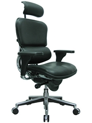 Leather Ergohuman Chair