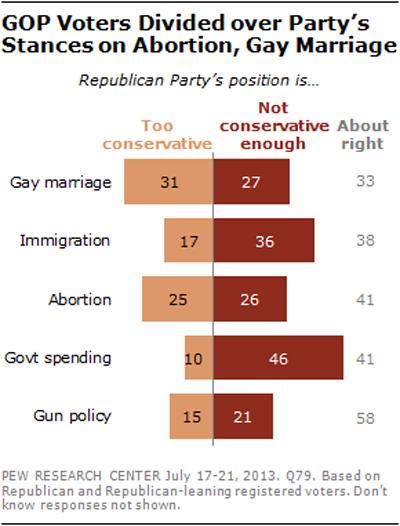 Democrats draft gay marriage platform