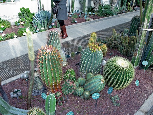 Jardim Botânico de Madri