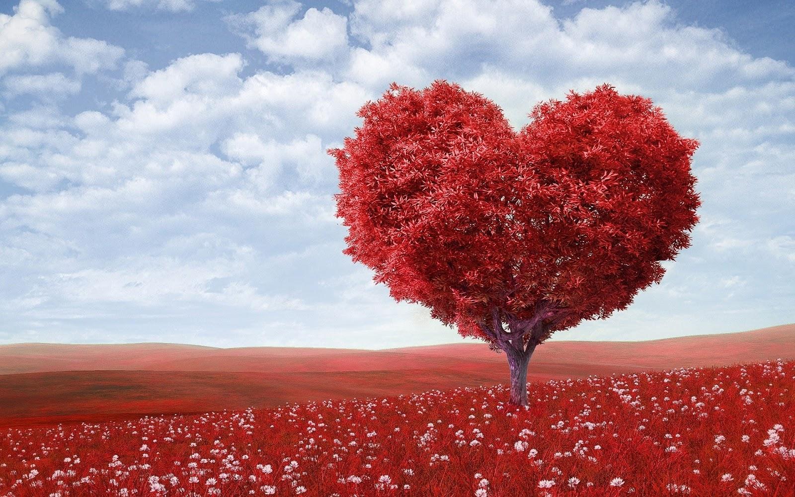 Ucapan Anniversary Romantis Buat Pacar