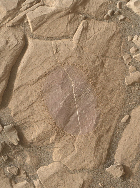 Martian ridge brings out rover's colour talents