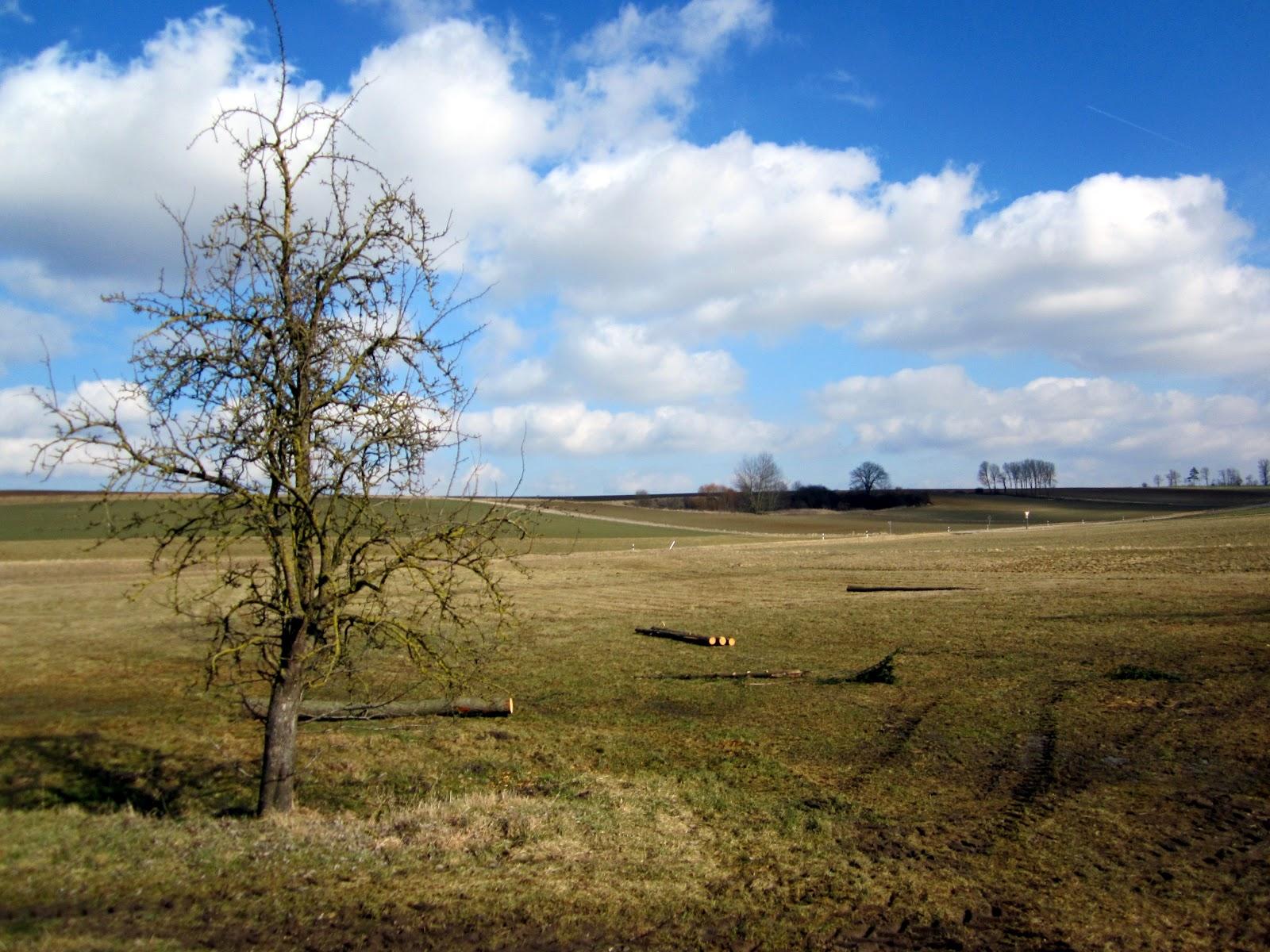 DOR-SCH: Warten Auf Den Frühling