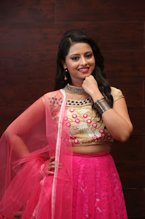 Geethanjali sizzles in Pink at Mixture Potlam Movie Audio Launch 024.JPG