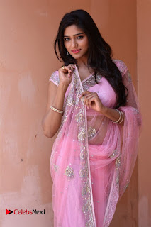 Telugu Actress Shalu Chourasiya Stills in Cute Pink Saree at Pochampally IKAT Art Mela  0003.jpg