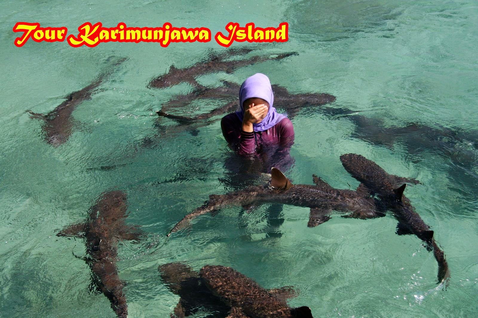 Paket Wisata Karimunjawa Bulan Juni 2016