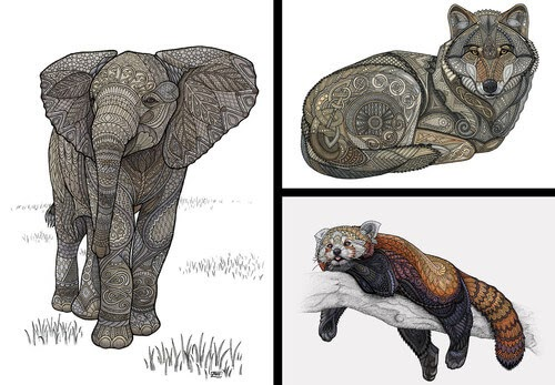 00-Z-H-Field-Distinctive-Animal-Drawings-and-Paintings-www-designstack-co