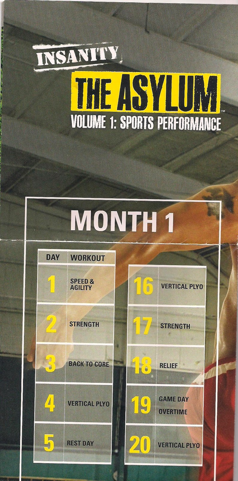 Insanity Asylum Volume 1 Calendar : insanity, asylum, volume, calendar, Project, Insanity, Asylum, Volume