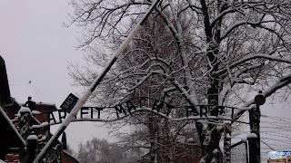 Pologne Les camps de concentration d'Auschwitz