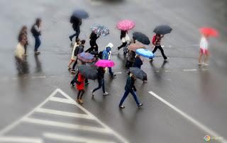 Kesan Hujan Asid Ke Atas Kesihatan