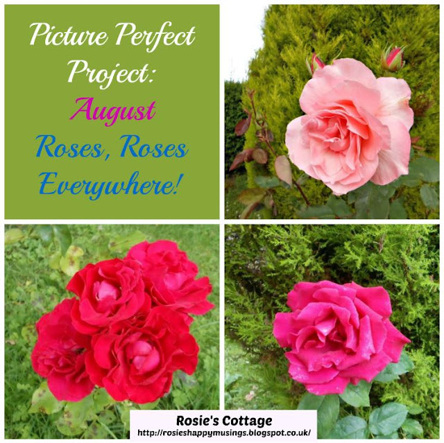 The Picture Perfect Project August