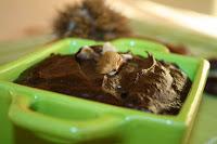 http://godtsuntogbillig.blogspot.fr/2013/11/konfektkake-kastanjer-sjokolade.html
