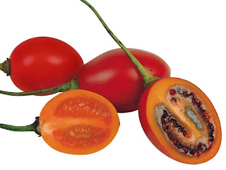 Tamarillo Fruit Pictures