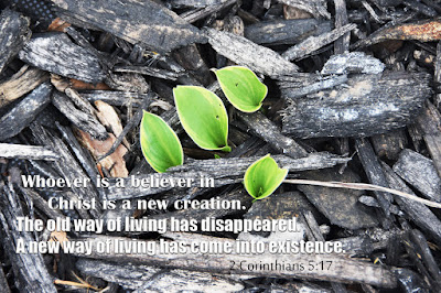 2 Corinthians 5:17 who is a believer in Christ is a new creation