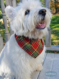 Christmas Peace Holiday Plaid Dog Bandana