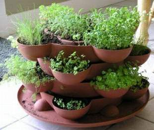 Layered Effect Herb Garden This Would Work Equally Well Indoors