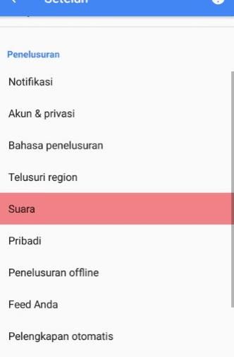 Cara setting suara ok google