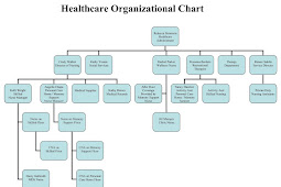 Healthcare Systems and Their Structure
