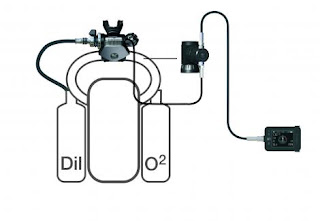 Ecosistema M28, Solid State Sensor e C-POD