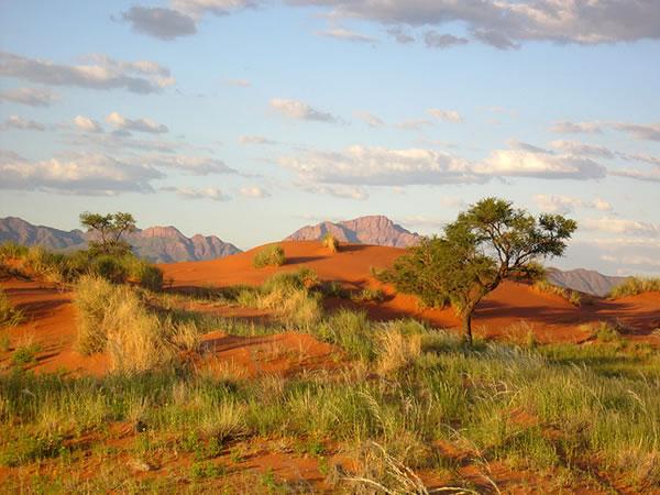 Margini Deserto Namib