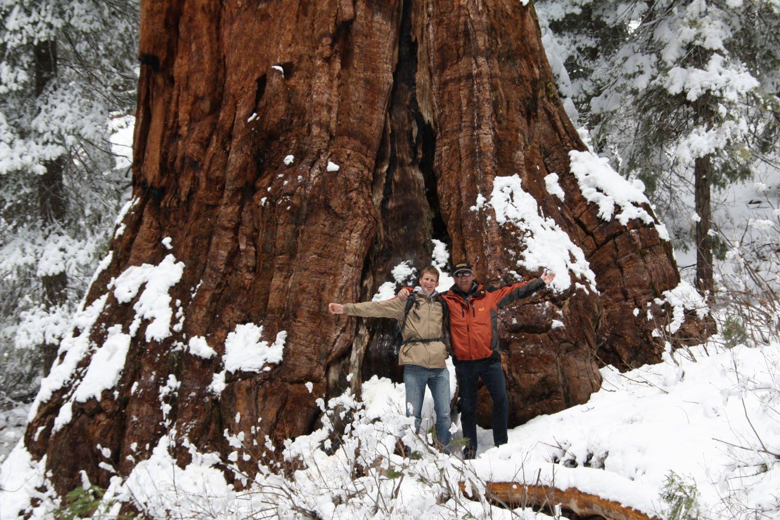 Familie Michl in Amerika Yosemite National Park