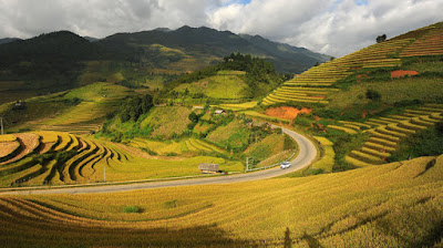 Mu Cang Chai - destination you can not miss