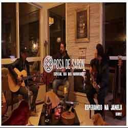 Baixar Música Esperando na Janela - Rosa de Saron Mp3