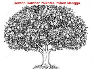 contoh psikotes gambar pohon mangga yang berbuah