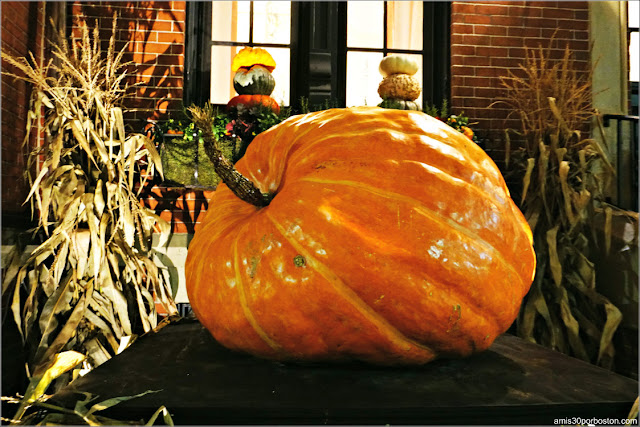 Calabaza Gigante en Back Bay, Boston