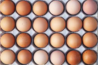 eggs contain drugs